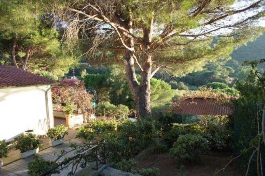 5 Casa, piazza, gazebo e pino dall'accezzo alto