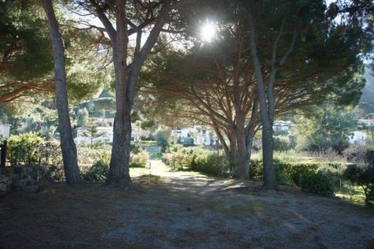 il viale d'accesso dalla villa