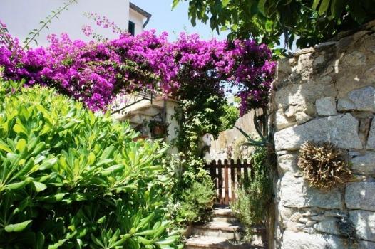 Casa La Terrazza sul Mare ingresso d'estate