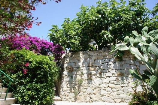 Pomonte vicolo davanti all'ingresso della Casa la Terrazza sul Mare