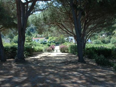 Eingangsallee Villa Eva