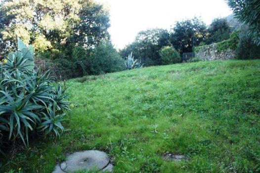 untere Wohneinheit Garten 1