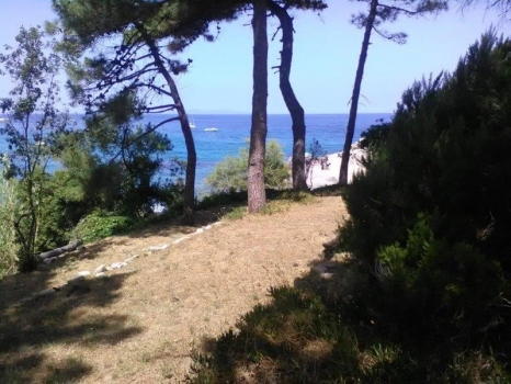terrazze degradanti sul mare