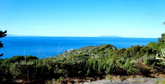 Vista dal giardino al piano terreno : Corsica - Capraia - Faro di Patresi