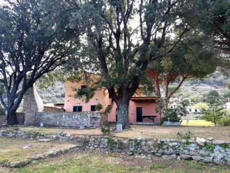 Casa Egle Vorderseite (dem Meer zugewandt)
