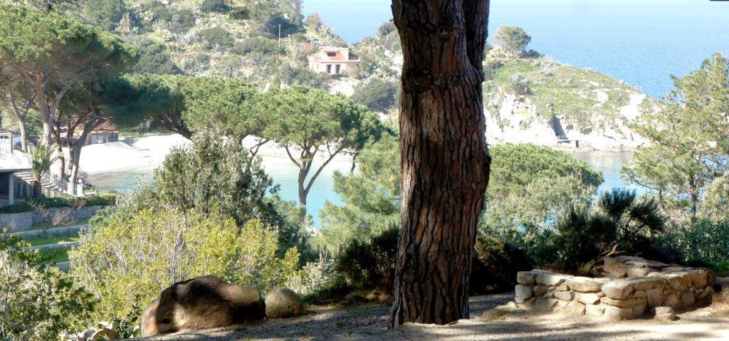 Casa Egle Posizione da sogno: sulle scogliere di Cotoncello - Sant'Andrea, immerso nel verde e con vista sul mare, un oasi di relax a pochi passi dalla spiaggia del Cotoncello