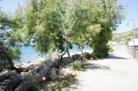 Via deglo Oleandri prima della spiaggia del relitto (1)