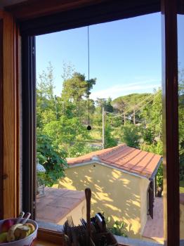 cucina-vista su giardino e dependance