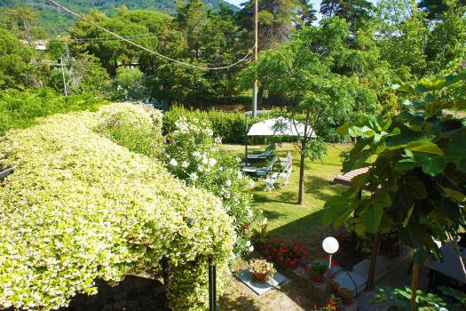 giardino-pergolato glicine