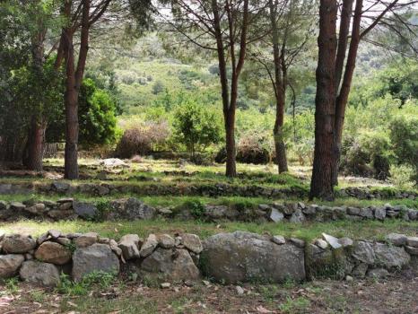 giardini e terreni (10)