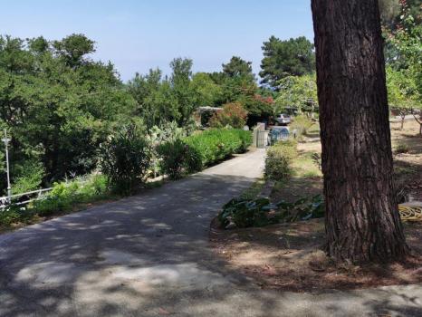 giardini e terreni (11)