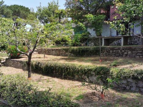 giardini e terreni (13)