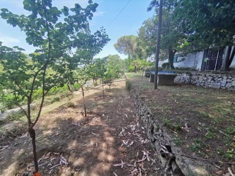 giardini e terreni (4)